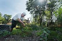 John Kaiser, proprietor of the Hamilton Club, weeds the garden.