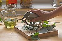 Naturkosmetik, Natur-Kosmetik, Kosmetik mit Efeu, Inhaltsstoffe aus zerkleinerten Efeublättern gemeinsam mit Olivenöl ergeben ein Öl gegen Zellulitis, Hedera helix, Common Ivy
