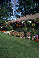 Mass plantings of impatiens in ground and in hanging planters with irrigation along house roof, with lawn grass