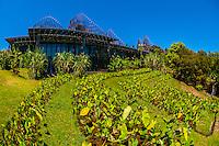 New Caledonia-Noumea-Tjibaou Cultural Center