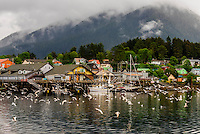 The harbor in Sitka, southeast Alaska USA.