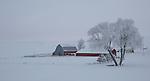 Washington, Eastern, Steptoe. A farm scene in a winter landscape on the Palouse at dawn.