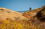 Old trestle near Hwy 95 south of Lewiston on the Camas Prairie Railroad