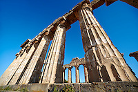 Greek Dorik columns at the  ruins of Temple F at Selinunte, Sicily photography, pictures, photos, images & fotos. 54