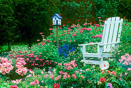 Adirondack chair in riotious garden with handpainted birdhouse