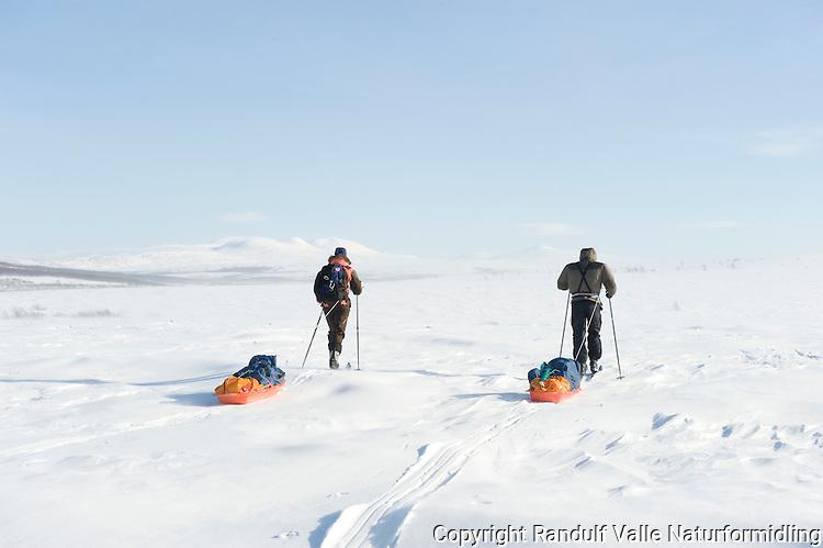To personer trekker pulk på vidda i Finnmark ---- Two persons pulling sleds