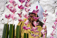 "A Salvadoran woman seen through palm branches with colorful flower blooms during the procession of the Flower & Palm Festival in Panchimalco, El Salvador, 8 May 2011. On the first Sunday of May, the small town of Panchimalco, lying close to San Salvador, celebrates its two patron saints with a spectacular festivity, known as ""Fiesta de las Flores y Palmas"". The origin of this event comes from pre-Columbian Maya culture and used to commemorate the start of the rainy season. Women strip the palm branches and skewer flower blooms on them to create large colorful decoration. In the afternoon procession, lead by a male dance group performing a religious dance-drama inspired by the Spanish Reconquest, large altars adorned with flowers are slowly carried by women, dressed in typical costumes, through the steep streets of the town."