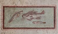 Fresco of fish, from the ornamental border of the cubiculum of the Casa dell Efebo, or House of the Ephebus, Pompeii, Italy. This room is decorated in the Fourth Style of Roman wall painting, 60-79 AD, a complex narrative style. This is a large, sumptuously decorated house probably owned by a rich family, and named after the statue of the Ephebus found here. Pompeii is a Roman town which was destroyed and buried under 4-6 m of volcanic ash in the eruption of Mount Vesuvius in 79 AD. Buildings and artefacts were preserved in the ash and have been excavated and restored. Pompeii is listed as a UNESCO World Heritage Site. Picture by Manuel Cohen