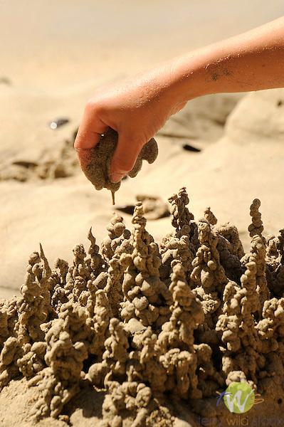 Building dribble sandcastles. Francis Bay Beach, St. John, USVI, Caribbean