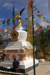 Drukgyel High School Stupa