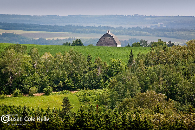 Old barn in Aroostook County, ME