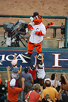 Tigers mascot, Paws, on top of Dugout dances and entertains the audience at Comerica Park.
