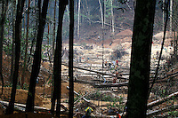 A view of an open-air gold mine, about 80km from Apui in the Brazilian state of Amazonas, Feb. 2, 2007. Thousands of people have created a virtually instant town in the remote Amazon forest to dig for gold in the region, discovered in Dec. 2006. The environment is not much of a concern as trees are felled and pits are dug by people from all over Brazil and from all walks of life. Most simply say that some deforestation in the immense amazon it is the price to pay for Brazilians to exploit their nation's riches. (FOTO:DOUGLAS ENGLE/AUSTRAL FOTO)