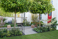 Townhouse front entry garden with house &amp; red front door, wrought iron pretty fence, maple trees, white wall, flower garden, perennials, pebble patio, walkway, lawn grass, for sophisticated, clean, upscale small but beautiful curb appeal