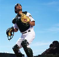 Baseball Portraits