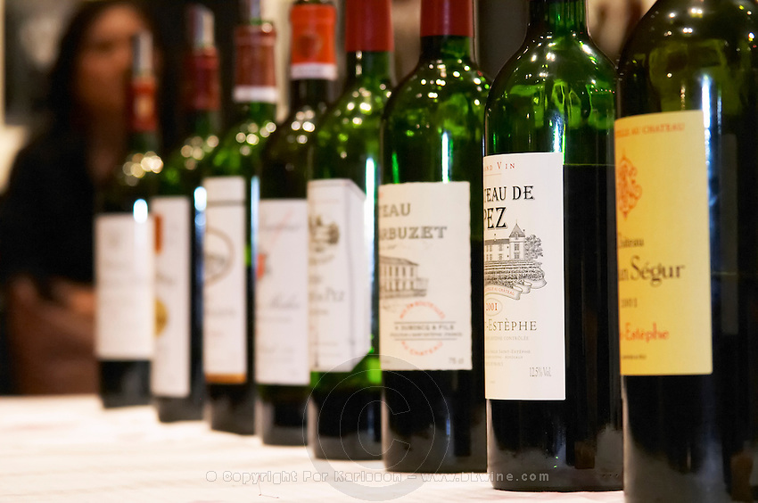 Cru Bourgeois wines in a line: Chateaux Phelan Segur, de Pez, Haut Marbuzet,..., Medoc, Bordeaux, France.
