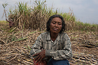 """Cambodia - Kampong Speu Province - Hai Morn, 64 sitting in the sugarcane plantation where they work daily as a labourer. She comes from Kork. In 2010, she was stripped of her land. Hai Morn, a soft-spoken woman of 64 from Kork. """"I come here just to earn enough money to survive"""" she explains, sitting on a recently harvested field for a few-minute-rest. Her eyes, thoughtful and calm, suddenly fill with tears, as she erupts in a quiet, sober weep. """"I cry all the time, I cannot even sleep at night"""" continues Hai, drying her cheeks with a cap. """"I go to see my land every day. Some of it is still empty"""" she sobs, as if she were speaking about a dear relative."""