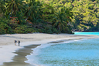 Donkeys walking on Cinnamon Bay<br />