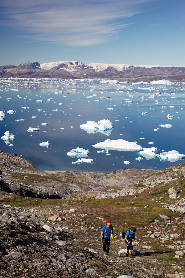 Hikers climbing up hill on edge of Sermilik Fjord near settlement of Tiniteqilaq, Greenland icecap in distance, East Greenland