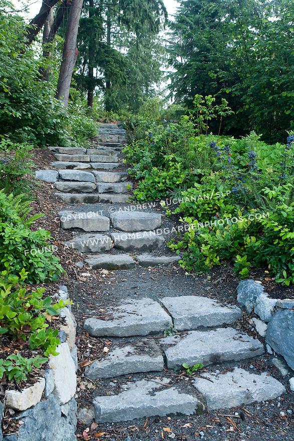 Df022292 Garden Seattle Arboretum Stock