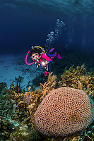 12 June 2014: SCUBA Diver Sally Herschorn explores the reef at Conch Pointe, on the North Shore of Grand Cayman Island. Located in the British West Indies in the Caribbean, the Cayman Islands are renowned for excellent scuba diving, snorkeling, beaches and banking.  Mandatory Credit: Ed Wolfstein Photo *** RAW (NEF) Image File Available ***