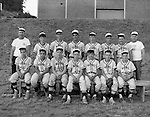Bethel Park PA:  Colonial Taxi Pony League Baseball Team - 1966.  Team members that I remember are; Mike Stewart, Jim Beck, (?), (?), Carl Long, (?), Rick Valentine, Rick Fisher, Mark Jaworski, Craig Balmford, Sandy Glenn, (? Lester), (? Barton). Coaches, Mr Glenn and Mr Jim Hannigan