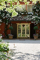 French windows flanked by a pair of bay trees in terracotta pots open on to a gravel courtyard where a dog is enjoying the sunshine