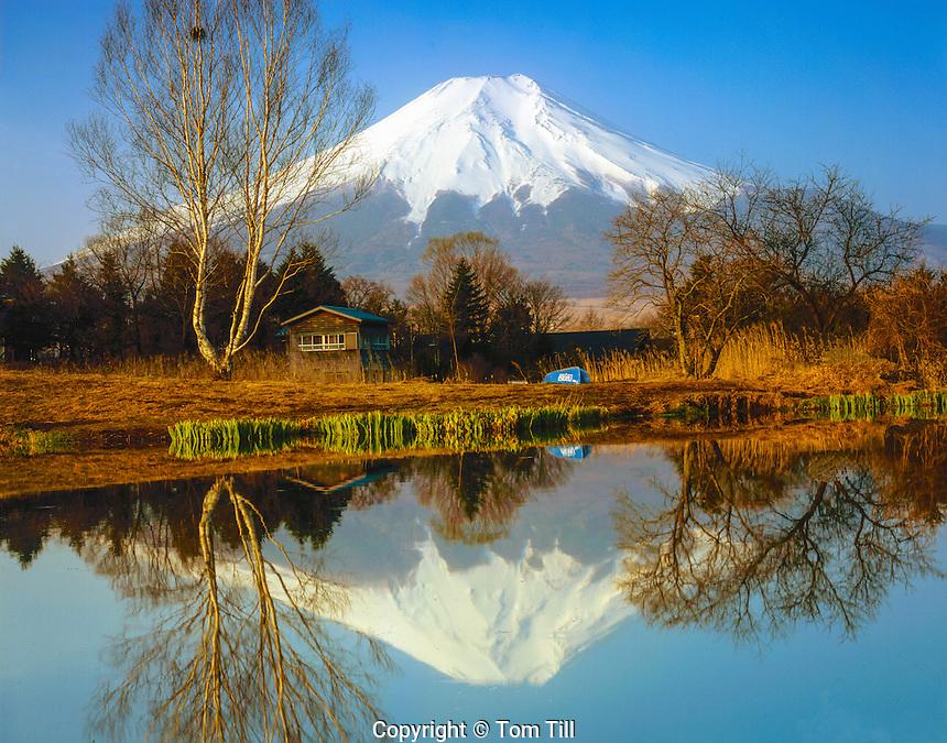 Mt. Fuji reflection, Fuji-Hazone-Izu National park, Japan 12, 388 foot dormant volcano, Reflected in Tsurga Ponds/Oshino