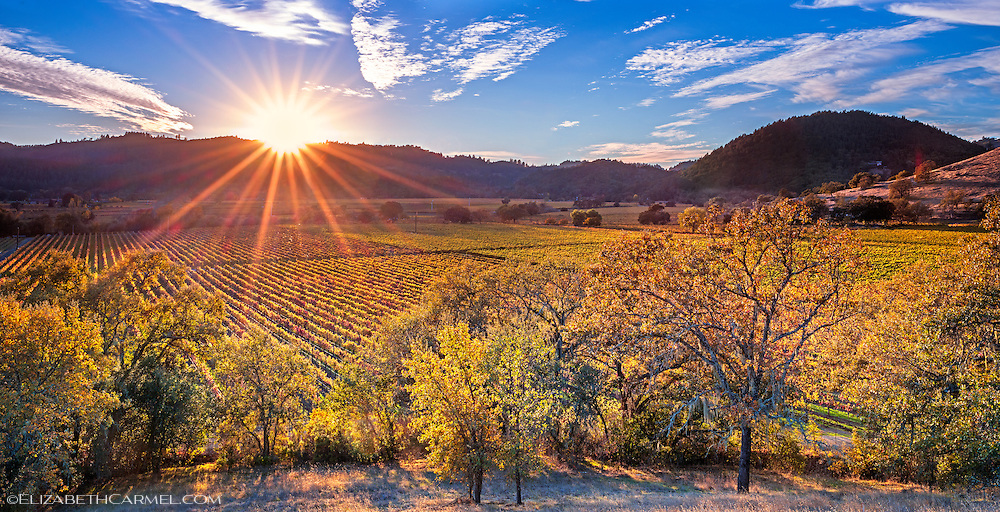 Evening Star, Napa Valley