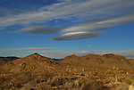 Lenticular cloud over Joshua Tree NP