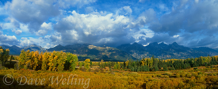 937000024 panoramic fall color graces the aspens as morning light hits the teton range at blacktail ponds grand tetons national park wyoming