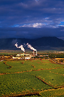 A mill in Kahului, Maui, among fields of sugar cane and beneath a sky full of clouds.