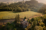 Roots estate vineyard, Yamhill, Willamette Valley, Oregon