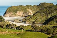 Coastal farmland with Wharariki Beach in background near Collingwood, Nelson Region, South Island, New Zealand