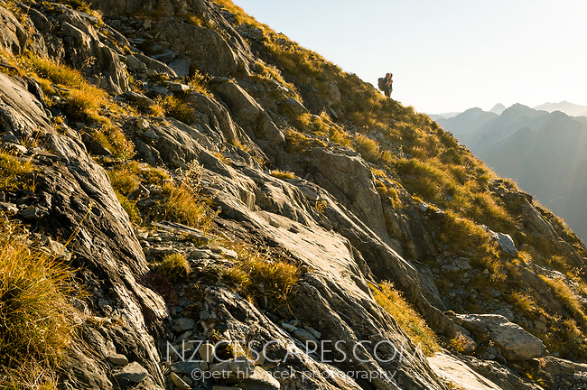 Trampers on slopes of rock and tussocky fields near Brewster Glacier, Mt. Aspiring National Park, West Coast, UNESCO World Heritage Area, New Zealand, NZ
