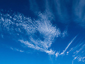 Cirrocumulus and cirrus clouds.
