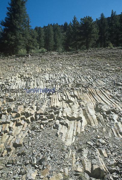 Columnar basalt showing jointing. Western USA.
