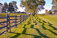 Split rail farm fence.