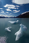 The Glacier Perito Moreno in Patagonia, Argentina