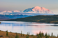 Pink evening light falls on the north face of Denali, North America's tallest mountain, with a reflection in Wonder lake, Denali National Park, interior, Alaska.