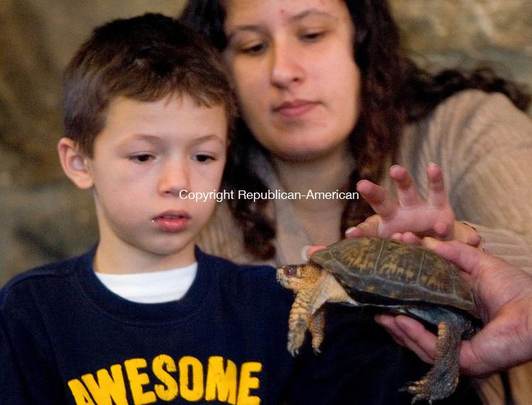 WINSTED, CT. 22 January 2011-012211SV04--Cameron Diamond, 8, and his mom Kristina Diamond of Torrington touch an eastern box turtle during The Winchester Land Trust reptiles program at Beardsley and Memorial Library in Winsted Saturday. Biologist Brian Kleinman of Riverside Reptiles brought live reptiles and amphibians for guests to learn about and touch. The trust won a $250 grant from the CT Society for Women Environmental Professionals to put on the program.<br /> Steven Valenti Republican-American