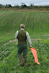Game bird shoot St Claire's Estate, Hampshire. England. Game Keeper flushing out game birds on radio to other Keepers.