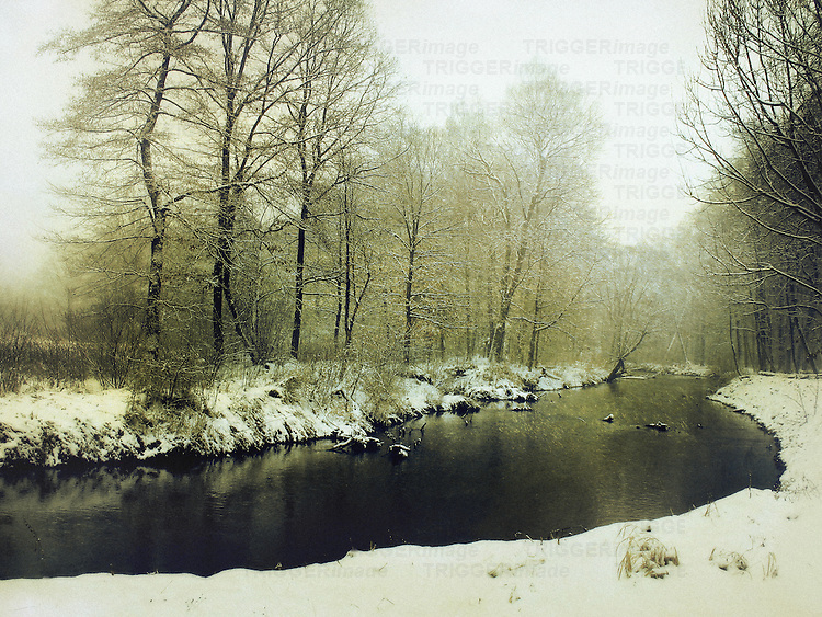 A landscape with a river bank in the front, and woods in the background, all covered with snow in a warm tonal palette.