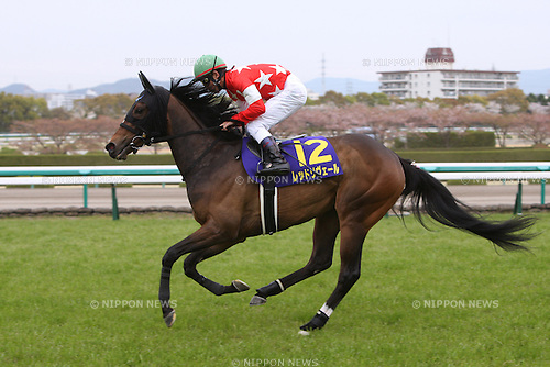 Red Reveur (Keita Tosaki),<br /> APRIL 13, 2014 - Horse Racing :<br /> Red Reveur ridden by Keita Tosaki before the Oka Sho (Japanese 1000 Guineas) at Hanshin Racecourse in Hyogo, Japan. (Photo by Eiichi Yamane/AFLO)