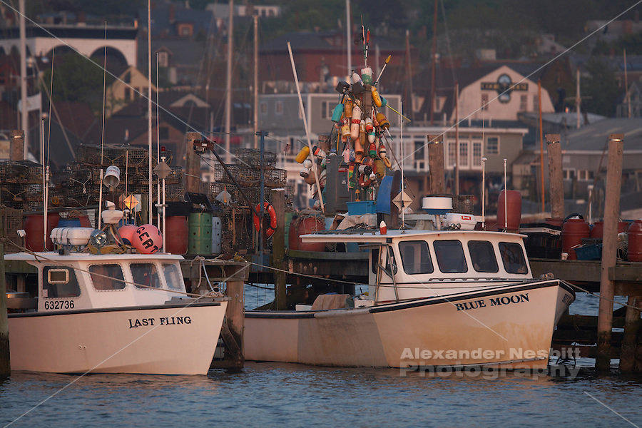 Lobster boats at the state fishing peir with downtown for Fishing newport ri