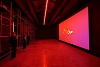 57th Art Biennale in Venice - Viva Arte Viva. Giardini.<br /> International Pavillion.<br /> Sebasti&aacute;n D&iacute;az Morales: Suspension (2014-17)