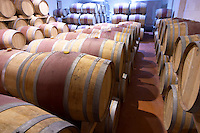 Oak barrel aging and fermentation cellar. Chateau Yon Figeac, Saint Emilion, Bordeaux France