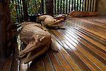 Milne Bay, Papua New Guinea; crocodile wood carvings at the entrance to the main building at Tawali Resort , Copyright © Matthew Meier, matthewmeierphoto.com