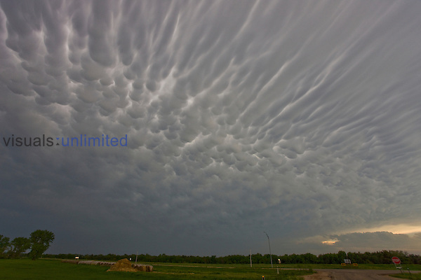 Extensive mammatus and anvil striations in central Nebraska.