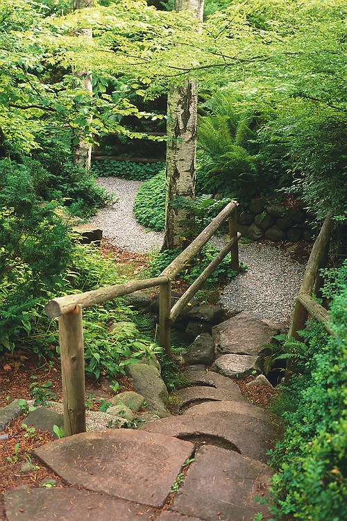 Steps and wooden railings leading to path under canopy of green trees in Spring, Filberg Lodge and Gardens, Comox, BC.